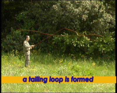 Tailing loop
